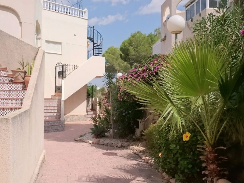 Apartment/Flat - Resale - San Miguel de Salinas - San Miguel - Country