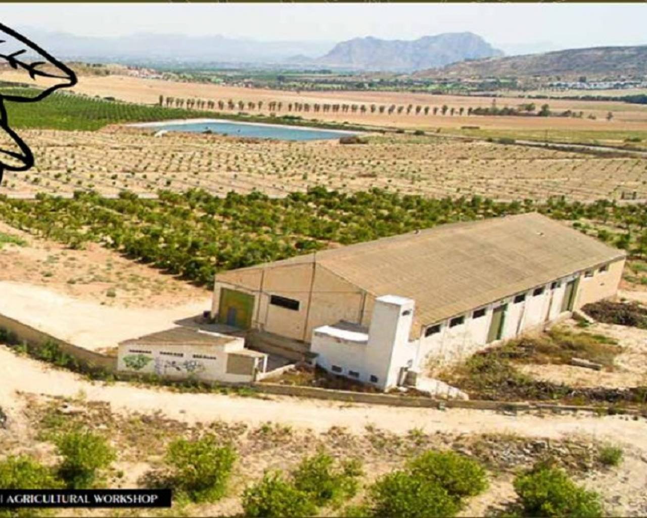 Resale - Country Land - Algorfa